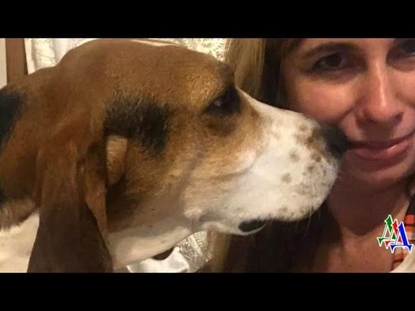 Пес всё время обнюхивал нос хозяйки. Тогда она пошла к врачу и… услышала страшный диагноз!