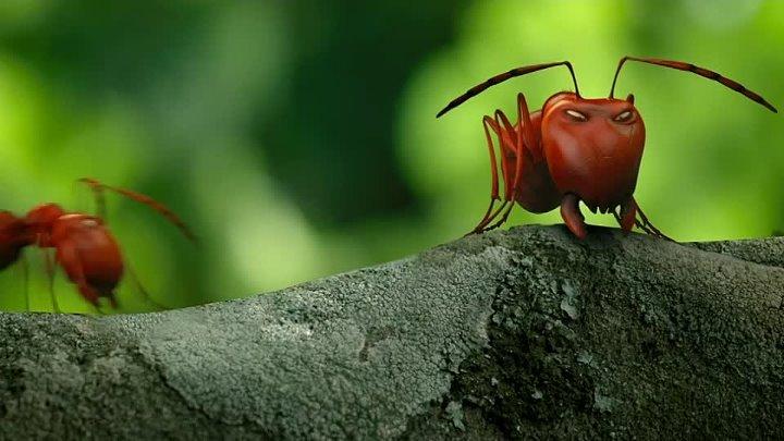 Букашки Приключение в Долине муравьев мультфильм приключения семейный