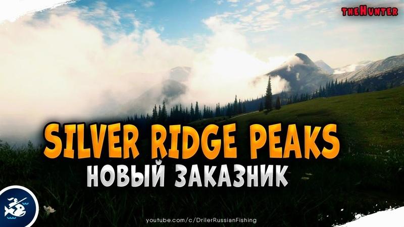 Первая игра на новом заказнике Silver Ridge Peaks Дикие индейки и новый Лук