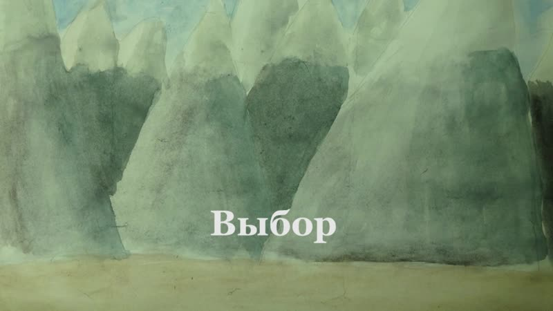 Пермский край г Очёр МАОУ ДО Видеостудия Сами Выбор