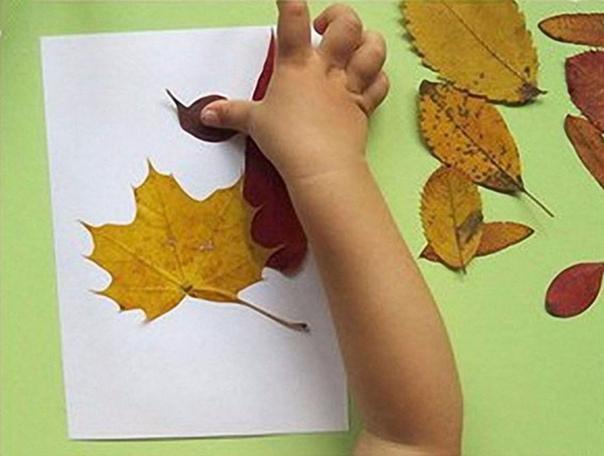 МИЛАЯ ОСЕННЯЯ ОТКРЫТКА Насобирайте с ребёнком в парке или лесу листьев разной формы и цвета. Старайтесь брать листочки небольшого размера. Засушите их в книге или под прессом. Наклейте листья на