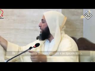 Шайх Саид аль-Камали о милосердии пророка () по отношению к животным