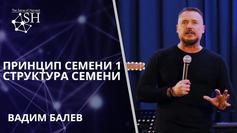 Принцип семени 1 Структура Семени Вадим Балев Киев 11 1 2020