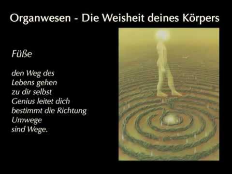 Organwesen von Ewald Kliegel und Anne Heng