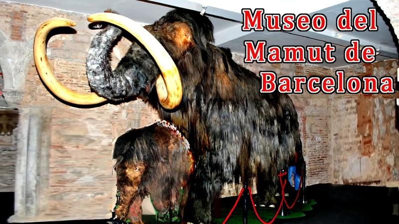 Museo del Mamut de Barcelona con Mamut y Rinoceronte Lanudos y Bisontes y mastodontes