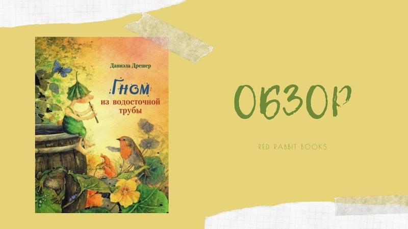 Обзор детской книги Гном из водосточной трубы Даниэла Дрешер