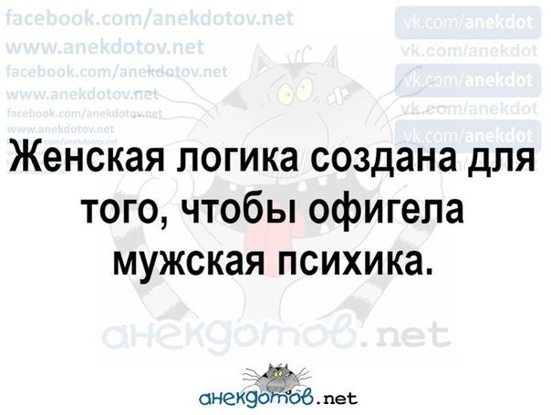 SuZC6OoiBD8.jpg