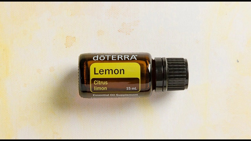 Лимон Citrus limon