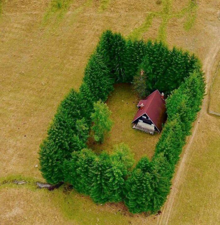 Идеальный домик для интроверта