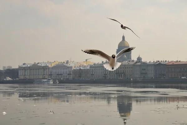 НЕИСЧЕЗАЮЩАЯ ЛЮБОВЬ Осень была мягкой и прохладной. Такой она бывает только в конце сентября в центре Москвы и нигде больше. Только теперь, в этот сероватый вечер, он до конца ощутил, что такое