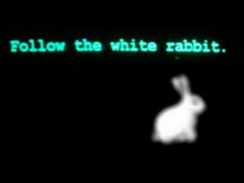 Следуй за Белым Кроликом Follow the white rabbit