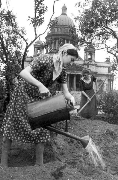 РАДОСТНОЕ письмо из блокадного Ленинграда. 6.06.1943 г. Только вчера послала тебе, мой мальчик, письмо. А сегодня вечером пишу снова. Знаешь, Пашенька, я давно хотела написать тебе РАДОСТНОЕ