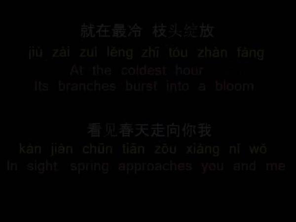 费玉清 一剪梅 A Spray of Plum Blossoms PinYin Lyrics Eng Translation