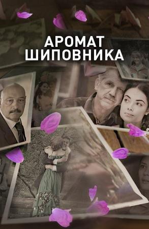 Аромат шиповника 1 сезон Смотреть сериал на ivi