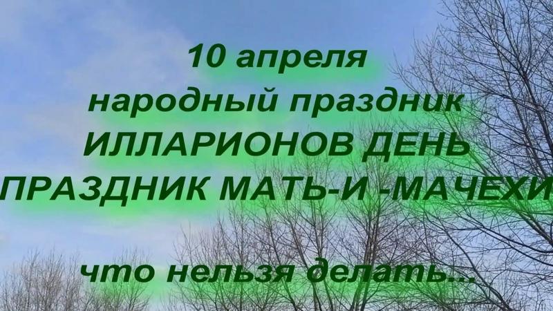 10 апреля народный праздник ИЛЛАРИОНОВ ДЕНЬ ПРАЗДНИК МАТЬ И МАЧЕХИ народные приметы