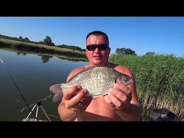 Рыбалка на пруду Карп карась подлещик отдых с женами
