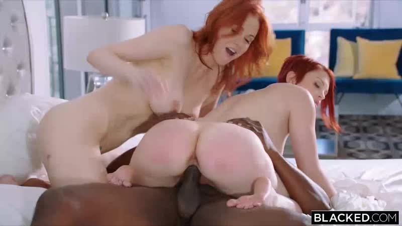 Blacked maitland bree