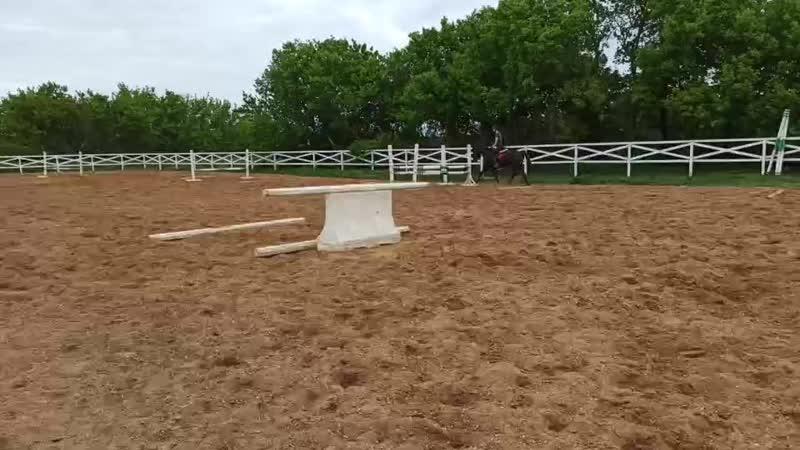 Даниэлла гимнастика