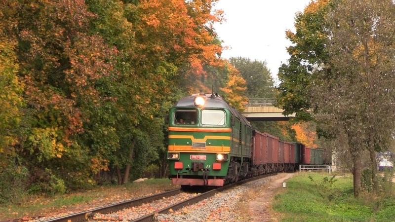 Тепловоз 2М62 0894 в осенних красках 2M62 0894 in autumn colors