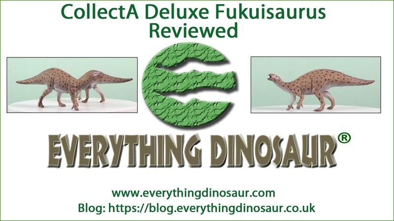 CollectA Deluxe 1 40 Scale Fukuisaurus Dinosaur Model Reviewed
