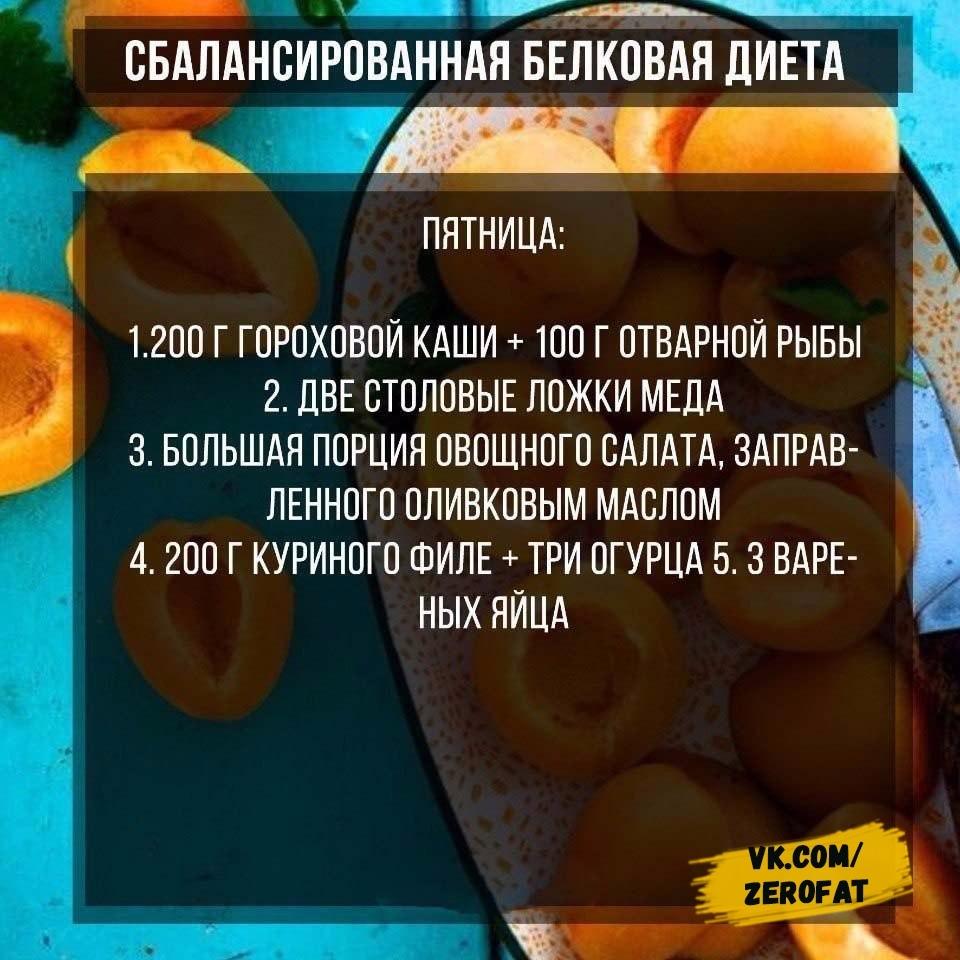 Пп белковая диета
