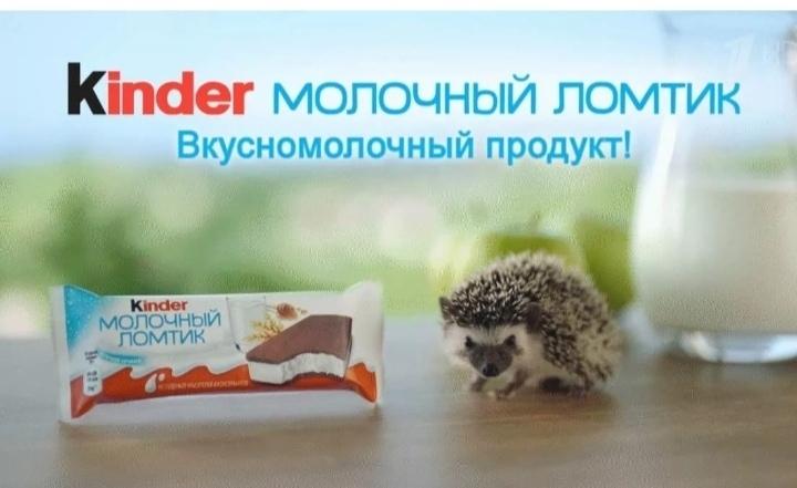 Реклама, опасная для ежей