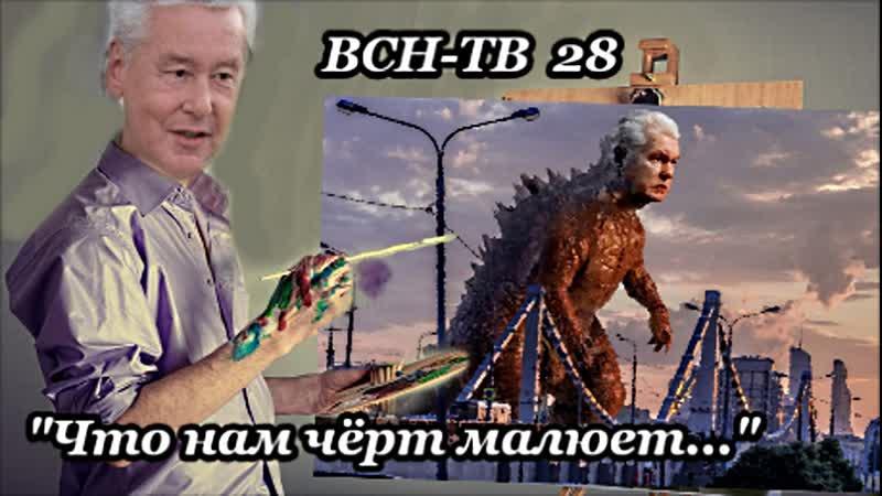 ВСН ТВ №28 Что нам чёрт малюет