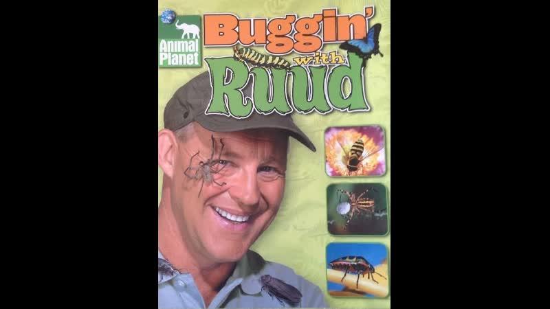 Природа 3 Рууд и его жуки 1 серия Жуки трюкачи