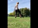 Snoot challenge Tricks with dog Трюки с собакой Снут челлендж