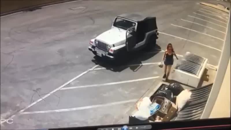 В Южной Калифорнии девушка приехала и просто выбросила 7 щенят на мусорку Собачек спас прохожий который стал свидетелем инциде