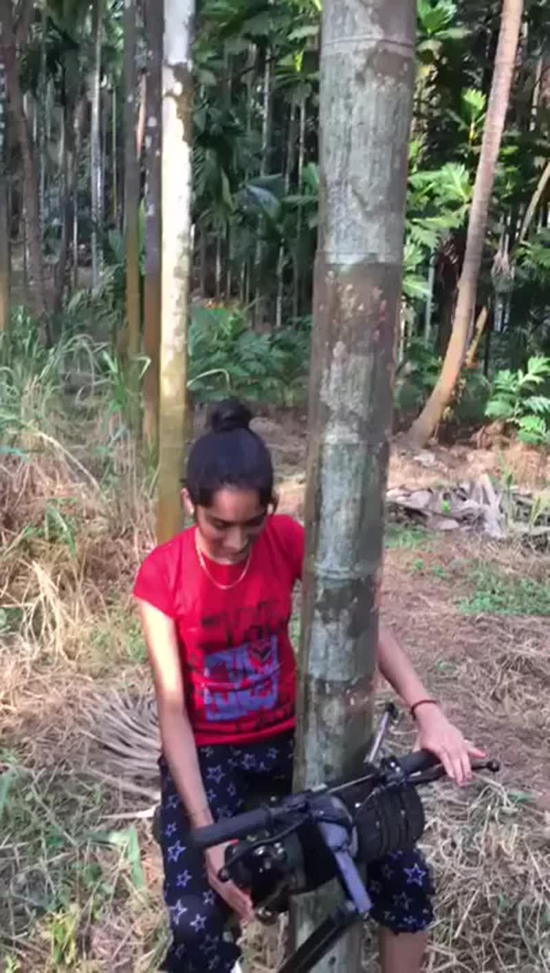 Современная машина для лазания по деревьям.
