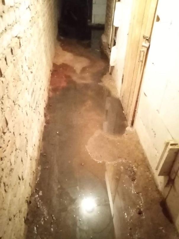 От подписчика #VosNews: ---------------------- У нас затопило подвал по