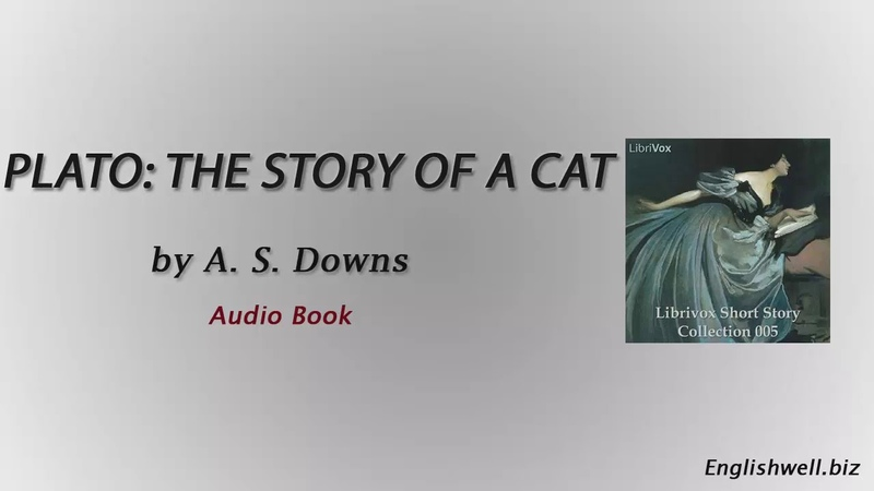 Plato The Story of a Cat by A. S. Downs - Short Story