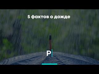 5 фактов о дожде