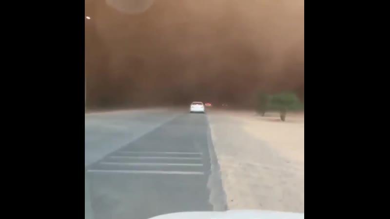 Песчаная буря Группа Выжить Любой Ценой