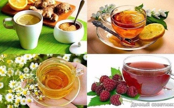 Полезные напитки при простуде