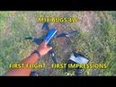 MJX BUGS 4W INITIAL FLIGHT TEST FIRST IMPRESSIONS