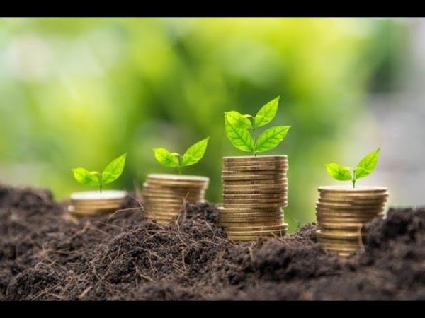 В Брагинском районе начали реализовывать первый в Беларуси проект Агробизнес-инкубатор