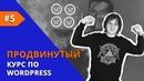 Создание сайта на WordPress Продвинутый курс Урок 5 Подключение анимации