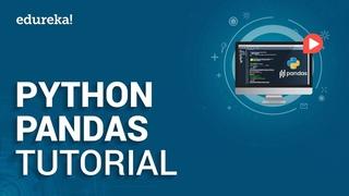 Python Pandas Tutorial Data Analysis with Python Pandas Python Training Edureka