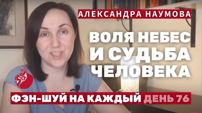 Воля Небес и Судьба человека Фэн Шуй на Каждый День 76 Александра Наумова