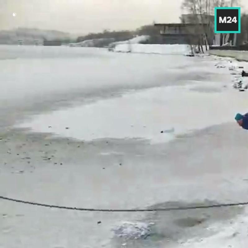В Нижнем Тагиле спасли провалившуюся под лёд собаку – Москва 24