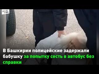 В Башкирии полицейские задержали бабушку за попытк...
