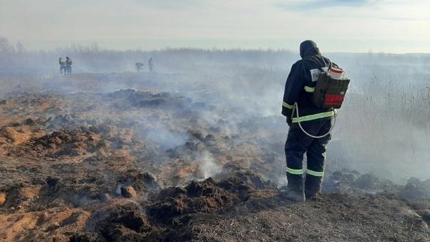 Работа на месте тлеющего торфяника в Екатеринбурге...