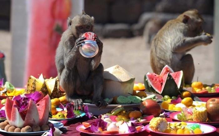 Самые впечатляющие праздники и фестивали, изображение №9