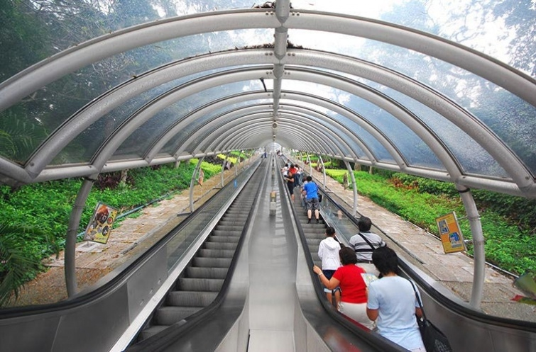 10 необычные видов транспорта, которые можно встретить в реальном путешествии, изображение №3
