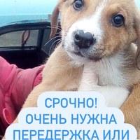 Фото Натальи Поляковой