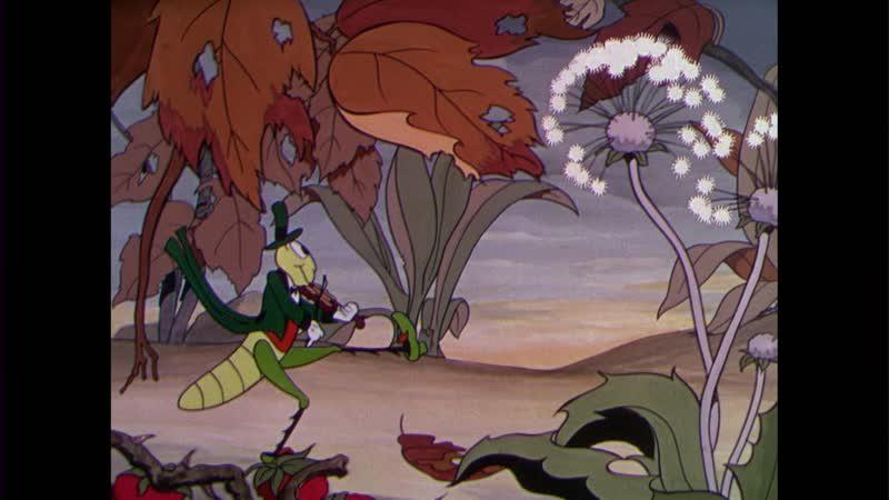 1934 02 10 Забавные Мелодии Кузнечик и Муравьи 1934 BDRemux 1080p