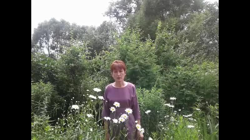 Сетевая акция поздравление Что может быть семьи дороже Библиотекарь Оксана Галаганова