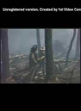 Katastrofa IŁ 62M SP LBG w Lesie Kabackim 9 05 1987